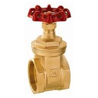 J1011 of Female Brass Gate Valve