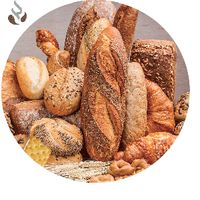 Transglutaminase Microbial Enzyme for Flour Improver thumbnail image