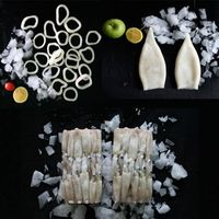 Japanese Flying Squid Illex Squid Bartrami Squid Baby Squid Rings/Tube/pineapple cut T+T whole round