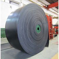 Chemical Resistant Fabric Conveyor Belt