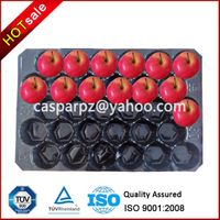 29*49cm Green Disposable PP Fruit Tray
