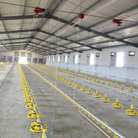 chicken broiler duck breeding poultry house steel structure