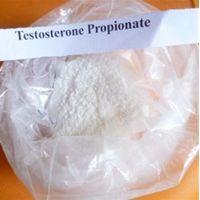 Offer Testosterone Propionate CAS: 57-85-2 thumbnail image