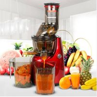 Electric slow juicer