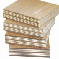 plywood with high quality sample free