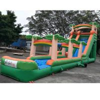 New arrival china inflatable slide, children inflatable slide ,outdoor inflatable slide thumbnail image