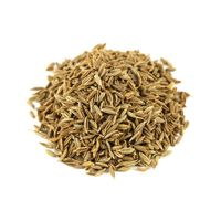 Cumin seeds, fennel seeds, fenugreek seeds