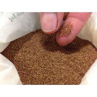 teff seeds,teff flour,White Quinoa,Amaranth