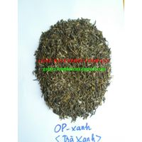 Export Green Tea - High quality