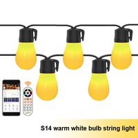Bluetooth warm white bulb string light