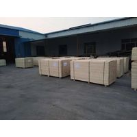China Supplier All Poplar lvl plywood
