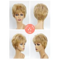 Female / Synthetic Wig Style No. 2254 234/Short/Straight