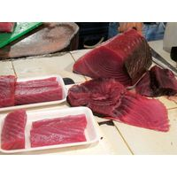 Sushi Grade Fish for Sale