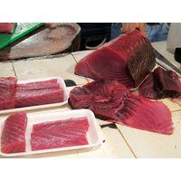 Sushi Grade Fish for Sale