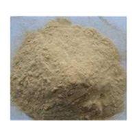 Sophora Root Extract
