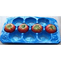 China Manufacturer Exporting Standard New Style PP Protective Inserts for Tomato in Supermarket