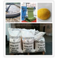 Factory Supplier Press and Plaste Polyaluminium Chloride 28% 29% 30% for Water Treatment