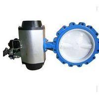 wafer buterfly valve