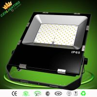 LED flood light 100w 150lm/w SMD3528 LED flood outdoor light