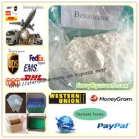 Pain Killer Benzocaine Hcl Powder Benzocaina hydrochloride CAS 23239-88-5