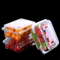 Disposable Round/Rectangule Food Plastic Fruit Tray With Lid