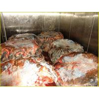 Ostrich Skin on refrigerator room  at -1° Celcius thumbnail image