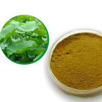 Lotus Leaf Extract