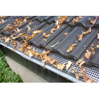 Stainless Steel Roof Guttering Grills