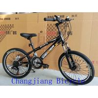 high end 20 inch mountain bike with suspension fork