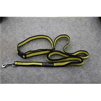 pet dog leash thumbnail image