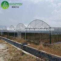 Multispan galvanized steel frame polytunnel low cost greenhouse for vegetable thumbnail image