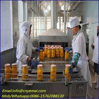 Tunnel Bottled Food Sterilizer ,microwave canned food sterilizing machine