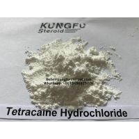 Tetracaine Hydrochloride CAS: 136-47-0 For Pain Reliever thumbnail image