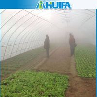 Cheap Agricultural Tunnel Greenhouse For Commercial Crop