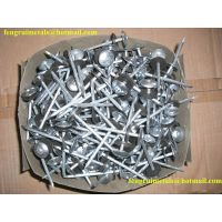 Cheap price umbrella roofing nails with rubber washer