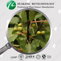 Pharmaceutical Grade Saw Palmetto