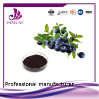 Anthocyanin Bilberry extratct