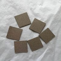 High temperature high pressure corrosion resistant hastelloy-C22 sintered porous filters thumbnail image