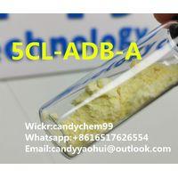 Yellow powder cannabinoids 5cl-adb-a 5CL-ADB-A 5cladba Wickr:candychem99