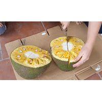 Green Jackfruit High Quality From Viet Nam Ms. Lani +84969331308