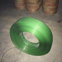 Green Embossed Polyester PET Plastic Strips for Packaging thumbnail image