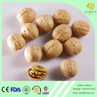 2017 crop extra light walnut in shell