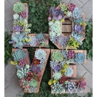 Custom wooden monogram planter box numerals letter any shape succulents moss holder wall hanging pla