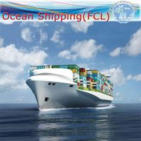 Sea Freight Shipping From China to West Europe Port FCL Logistics (Sea Shipment / Sea Freight / Frei