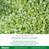 Frozen Diced Celery/IQF Diced Celery/Frozen Celery Dices/IQF Celery Dices