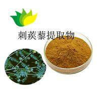 Tribulus Terrestris Plant Extract