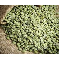 Sumatera Arabica Aceh Gayo Specialty Green Coffee thumbnail image