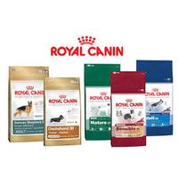 Royal Canin Maxi Adult Pet Food, Dog Food, Cat Food, Pet Food thumbnail image