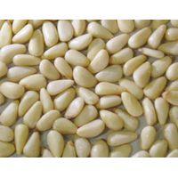 pine nut kernels 001 thumbnail image