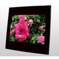 private model!!!8inch digital photo frame!!!with WIFI function!!!very good price!!!
